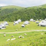 Отдых в Черногории в уютном коттедже